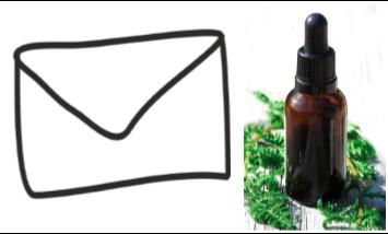 Bachblüten Mensch und Tier Beratung per E-Mail 1